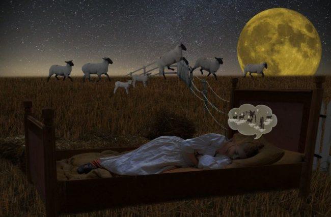 Não Consigo Dormir – 5 Passos para Dormir em 5 Minutos!